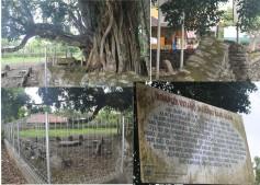 Makam Rajo Alam